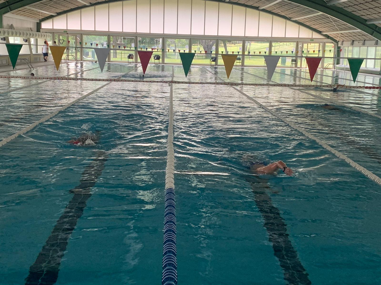 Nadadores en la piscina cubierta del Club.