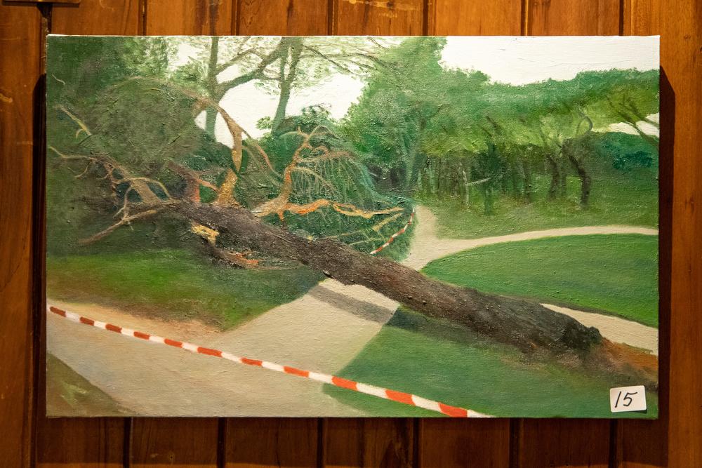 Accésit 2º - Mónica Tamames con El árbol caído. Foto: Miguel Ros