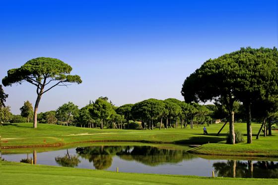 Campo de golf del Real Club Vista Hermosa.