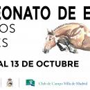 Cartel Campeonato de España Caballos Jóvenes 2019.
