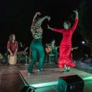 Flamenco de Etnia y Tradición. Foto: Miguel Ros / CCVM